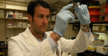 IMAGE: Dr. Gilpin in his lab conducting research