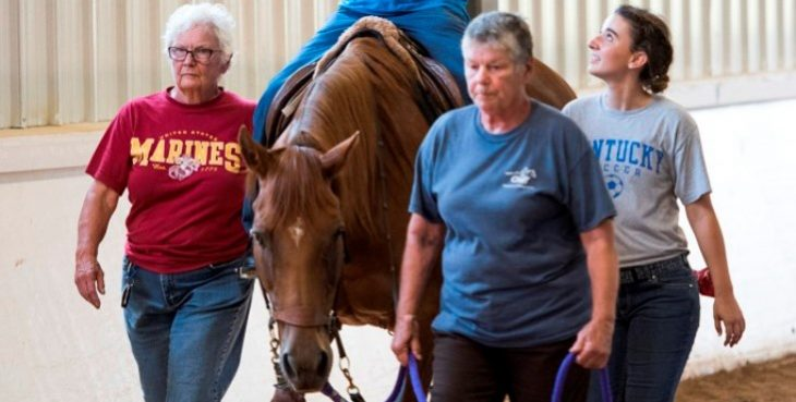 Image: Equine Therapy