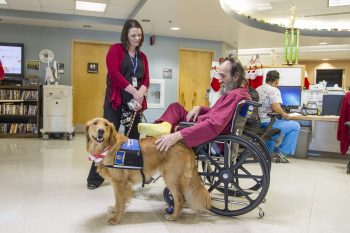 Army Veteran Raymond McGinty introduces himself to Honor while canine handler Terri Woodworth quietly looks on.