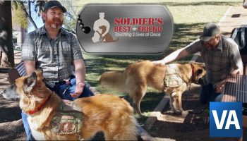 Soldier's Best Friend connects Veterans with dogs
