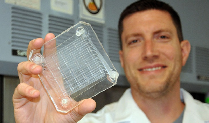IMAGE: Biomedical engineer Dr. Joseph Potkay, with the VA Ann Arbor Health Care System, displays a 2D prototype of an artificial lung. A 3D version is in production. (Photo by Brian Hayes)