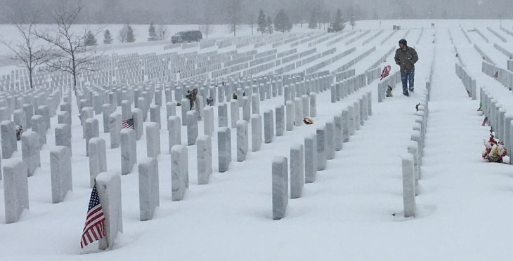 Veterans Day at Great Lakes National Cemetery