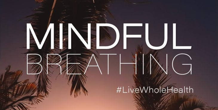 Mindful breathing increases the flow of oxygen to your brain and allows your nervous system to promote a state of calmness.