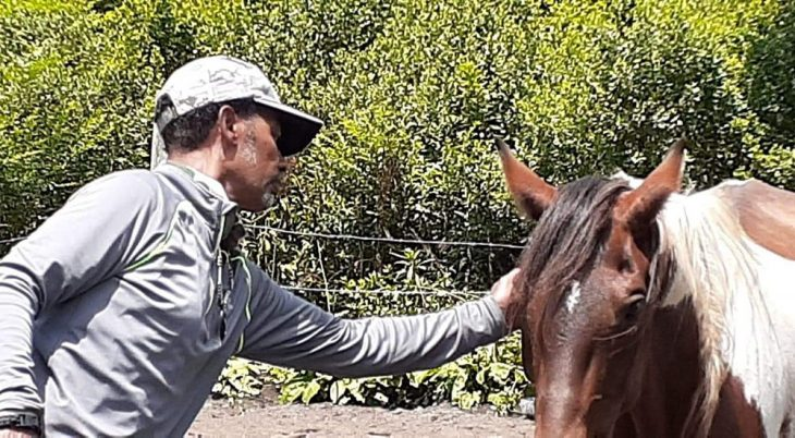 Man grooming a horse
