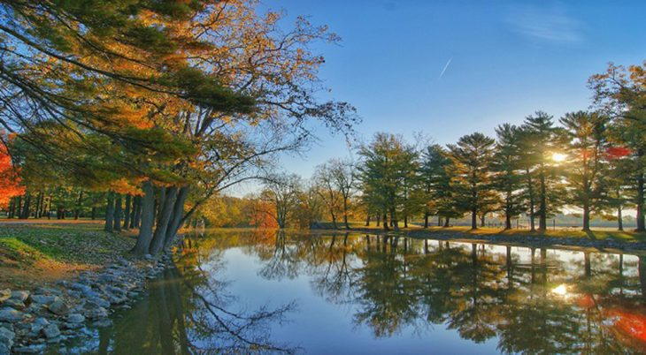 Country pond surrounded by Autumn trees