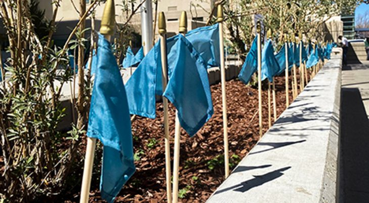 Teal flags posted around a hospital