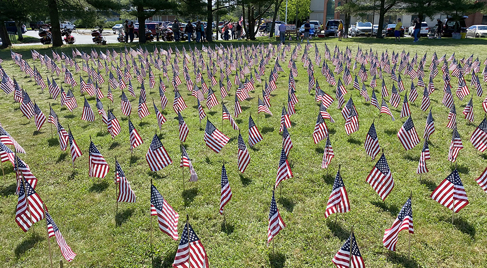 Hundreds of flags in a field, representing Veteran suicides