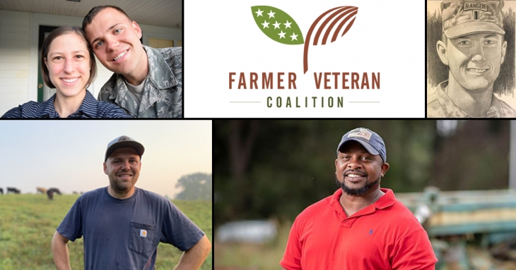 Veterans have an opportunity to use the land they fought to defend, getting assistance along the way. Farmer Veteran Coalition can help.