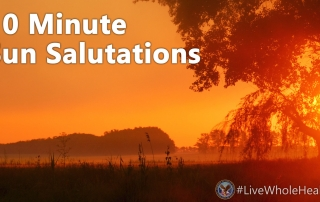 """Sun salutations are a beautiful way to """"salute"""" the sun and show gratitude for the blessings it offers to our earth."""